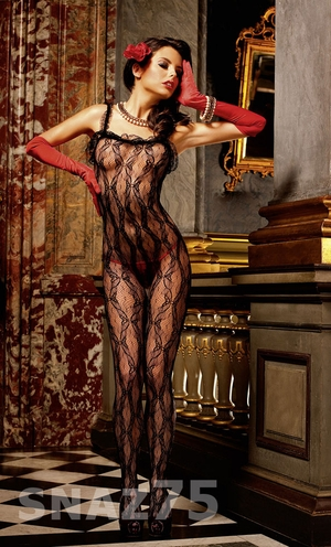 Lace Bodystocking * 177