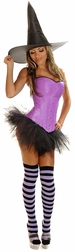 Plus Size Sexy Purple Pin-Up Witch Costume