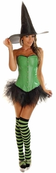 Plus Size Sexy Green Pin-Up Witch Costume