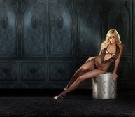 Lacey Rhinestone Fishnet Bodystocking