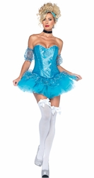 5 PC Cinderella Costume