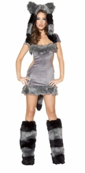1PC Naughty Raccoon Costume