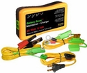 6 Volt 25 Watt Battery Saver/Maintainer and Battery Rescue