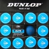 Dunlop Hard Ball for Doubles