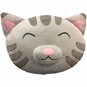 Big Bang Theory Soft Kitty Pillow