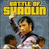 Battle of Shaolin