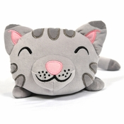 Big Bang Theory Soft Kitty