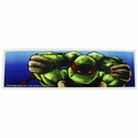 Ninja Turtles Tying Mask Sticker