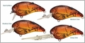 LIVETARGET Lures Crawfish Crankbait C64M Medium Dive 2 1/2""