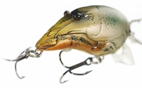 LIVETARGET Lures Crawfish Crankbait CDD65D Deep Dive 2 1/2