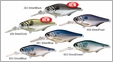 LIVETARGET Lures Gizzard Shad Crankbait GZC51M 2in