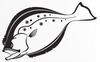 Steelfin Flounder Decals