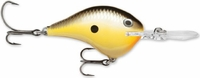 Rapala Dives To Crankbait Lures DT06