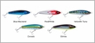 Braid GT Minnow Crankbait Lures