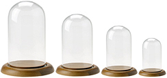 Glass Doll Domes with Oak Base