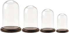 Glass Domes with Walnut Base
