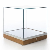 20in. Counter Display Case