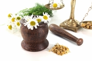 Natural Herbal Alternatives for an Overactive Bladder
