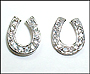 Horseshoe CZ Earrings in Silver