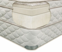 EcoSanctuary Organic Firm Latex Mattress by Natura