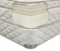 EcoSanctuary Organic Plush Latex Mattress by Natura