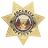 7 Point Badge Security Officer