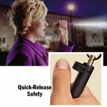 ASP Key Defender Pepper Spray Baton