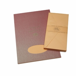 G. Lalo Verge De France Large Tablet and Envelope Set (8.25 x 11.75) in Apricot