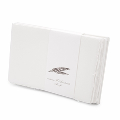 Amalfi Informal Folded Notes (8 ct.) (3.5 x 5.25)