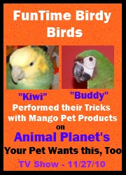 FunTime Birdy on Animal Planet's - Your Pet Wants This Too