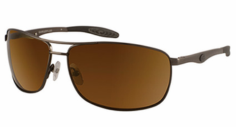 Gargoyles<br>Interval<br>Sunglasses