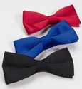 Banded Bow Tie