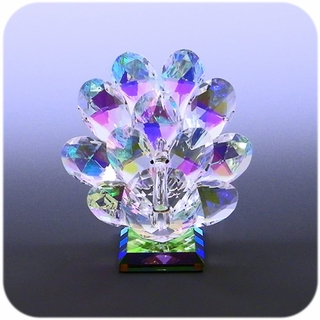 Color Crystal Peacock (M)