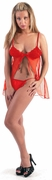 Sheer & Lace Baby Doll Front opened & panty