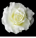 Diamond White Ravish Rose Bridal Hair Clip