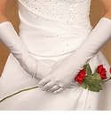 Below Elbow Length Bridal Gloves