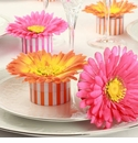Gerber Daisy Striped Favor Boxes Kit (Set of 10)