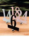 Laser Expressions Classic Die Cut Table Numbers (Set of 12)