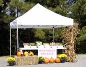King Canopy Goliath Tent - Commercial Grade 10' x 10' Instant Canopy