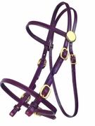 TUCKER PLEASURE TRAIL BRIDLE (BN, BK, GN) 313
