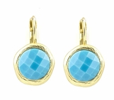 Faceted Turquoise Textured Frame Leverback Earrings