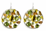 Multi Gem Filled Circle Leverback Earrings
