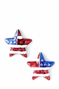 Patriotic Star Crystal and Enamel Earrings