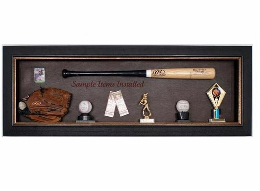 Baseball Bat Display Case