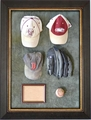 Baseball Caps Display Case