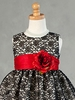 Baby Lace Overlay Pattern Holiday Dress