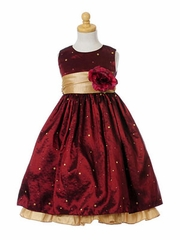 Taffeta Embroidery Girl's Holiday Dress