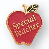 SPECIAL TEACHER APPLE PIN