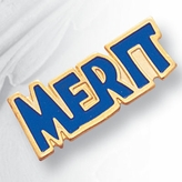 MERIT PIN ENAMELED