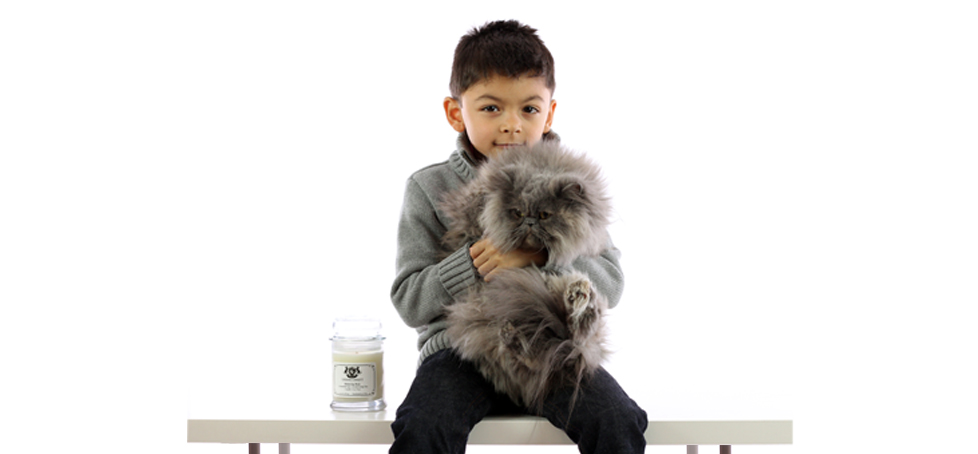 Boy with cat and aromatherapy freshening spray